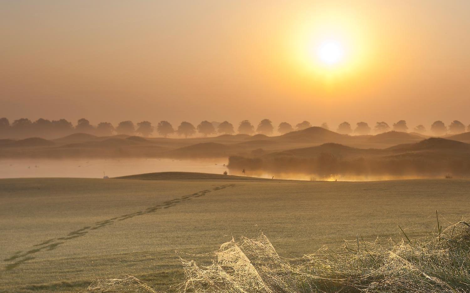 The Dutch golfbaan