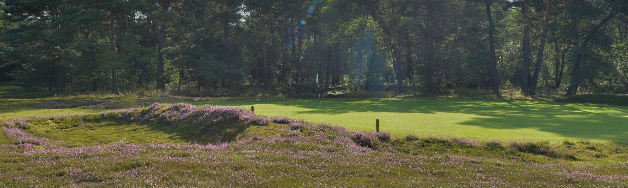 Ullerberg heide golfbaan